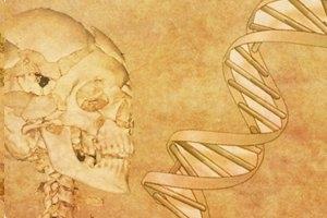 Dept. of Forensic Medicine & Toxicology