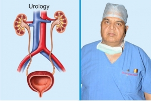 Urology and Kidney Transplant